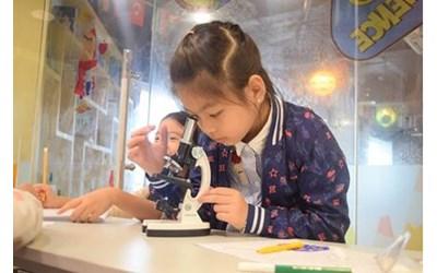 """Picture of Khóa học """"Tương tác khoa học"""" – Phương pháp STEAM tại Học Viện Khám Phá"""